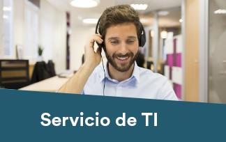 Servicio de TI